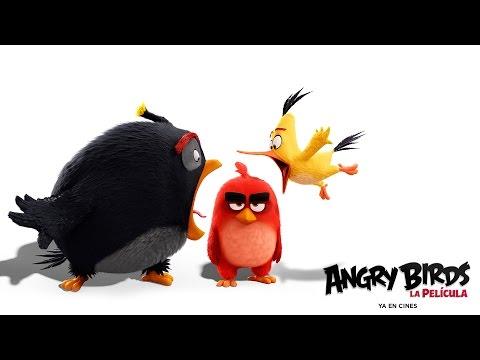 ANGRY BIRDS LA PELÍCULA. El grito de Chuck y Bomb. Ya en cines.