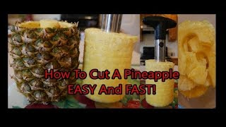 Pineapple Corer Amazon Review Video - Stainless Steel Pineapple Slicer Peeler Cutter - How To Use