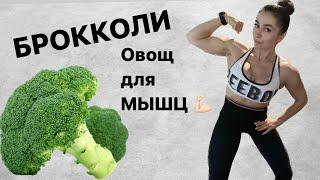 Брокколи - овощ для мышц