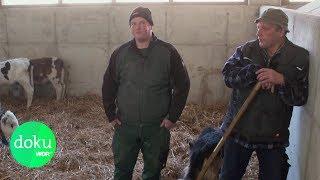 Kurz vor dem Aufgeben: Burn-Out bei Deutschen Bauern  | WDR Doku