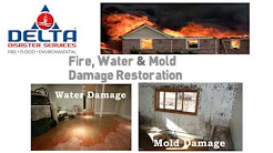 South Florida Disaster Restoration and Cleanup Services - Water, Mold, Fire, Sewage