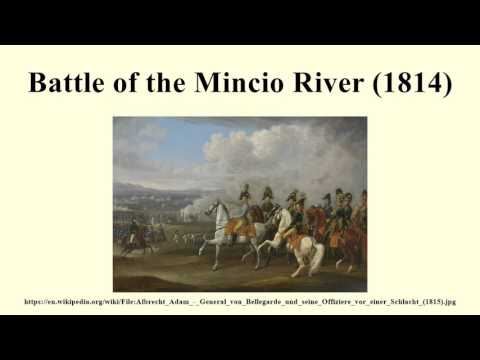 Battle of the Mincio River (1814)