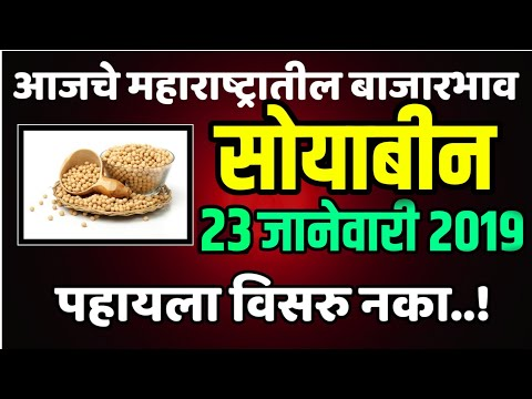 23 जाने. आजचे सोयाबीन चे भाव | Soybean Market Price Today in Maharashtra | Aajche Soyabin Bajar Bhav