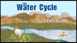 The Water Cycle - Untamed Science