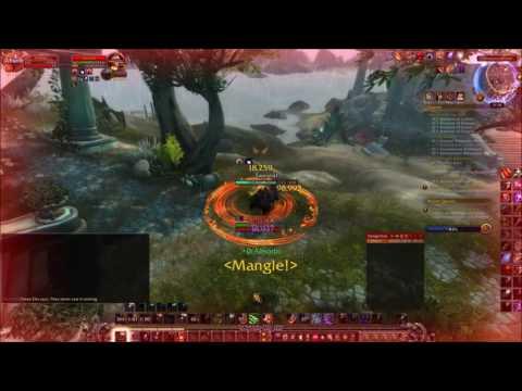 Guardian Druid PVP