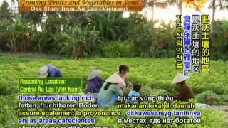 Growing Fruits and Vegetables in Sand - One Story from Âu Lạc (Vietnam)