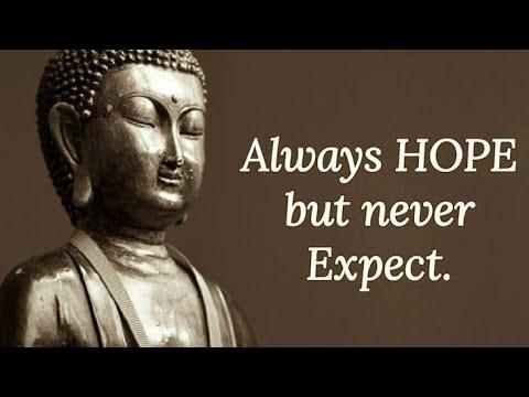 Buddha Quotes That Will English You | Gautam Buddha Quotes | Buddha Quotes