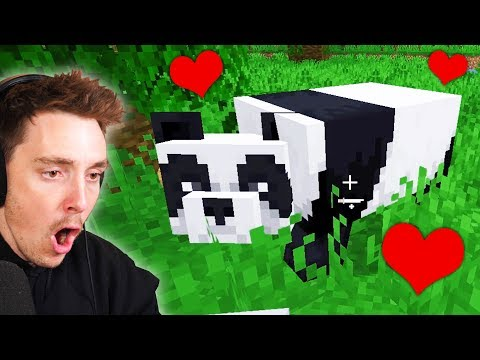 I Tamed A PANDA In Minecraft (part 9)