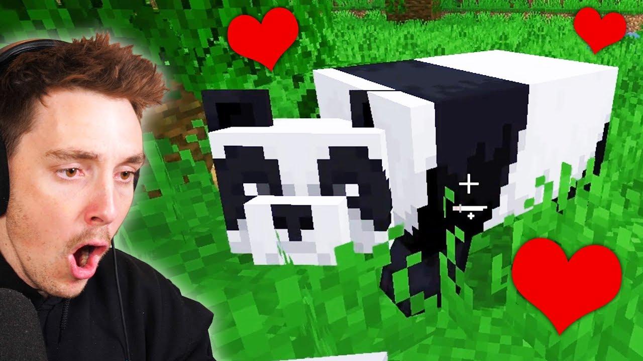 Ich habe einen PANDA in Minecraft gezähmt + video