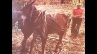 Old Rattler - Whoa Mule - Al Brown - Country Singing About A Dog And A Mule