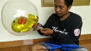 Tutorial balon buricak burinonk/bobo balon led/balon karakter