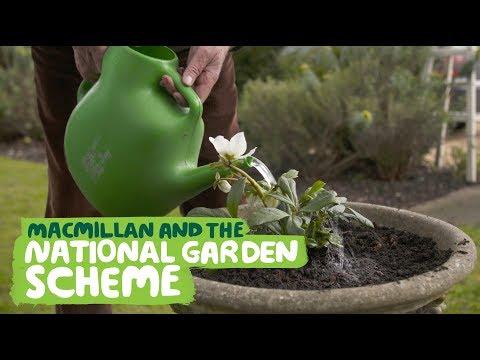 Macmillan and the National Garden Scheme
