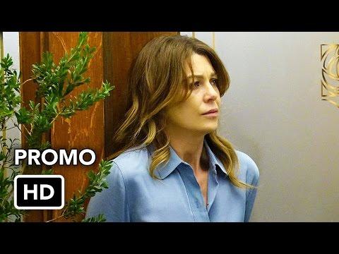 Grey's Anatomy: 13x19 What's Inside - promo #01