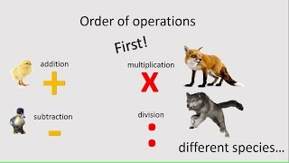 Order of Operations, Math Common Core, 5.OA.1