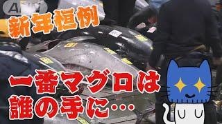 今年は去年よりもお買い得!?豊洲で初競り、一番マグロは2084万円!【マスクにゃんニュース】 - YouTube