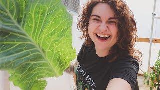 Baker Creek Spring Tour | Plant Lady Adventure VLOG | Roots and Refuge