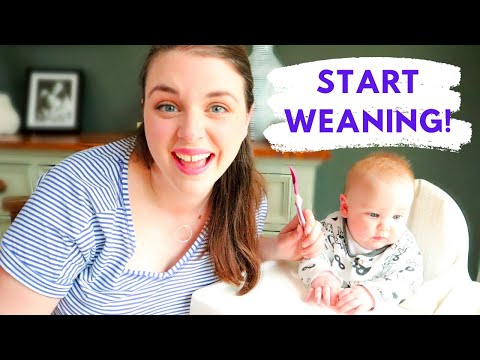 BABY LED WEANING: A step by step guide to starting solid food with your 6 month old baby.