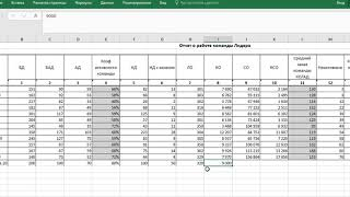 Отчет по работе команды лидера  Планирование лидера 23% команд в Биоси