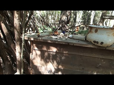Metal Detecting! - Found a treasure trove in the woods!