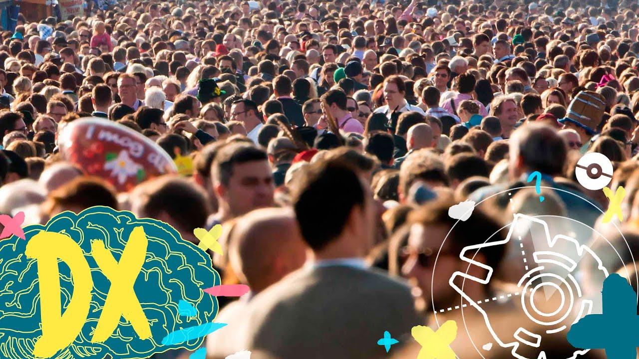 ¿Cuántas personas tienen el mismo número de pelos en Logroño?