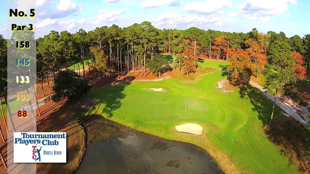 Total Approach Golf : Longer Drive, Longer Lives