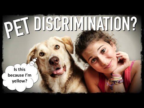 Legal Discrimination Against Pet Owners?