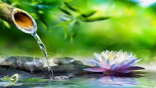 Relaxing Piano Music  Sleep Music, Water Sounds, Relaxing Music, Meditation Music