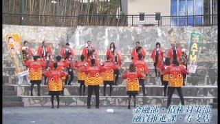 チームきもつきダンスプロジェクト 【鹿児島きもつき農業協同組合】