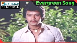 Evergreen Hit Song of the day || Rani Ranamma Video Song || shalimarcinema