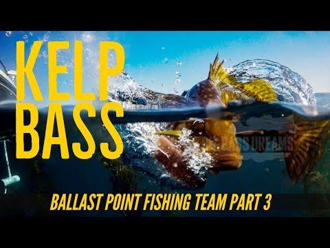 Ballast Point Brewery Fishing Team Part 3 - Kelp Bass At San Clemente Island