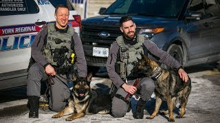POLICE DOGS: Police adds two stalwarts to Canine Unit