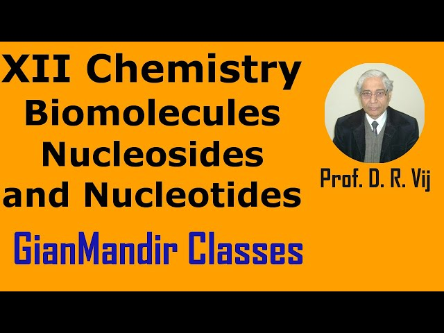 XII Chemistry | Biomolecules | Nucleosides and Nucleotides by Gourav Sir