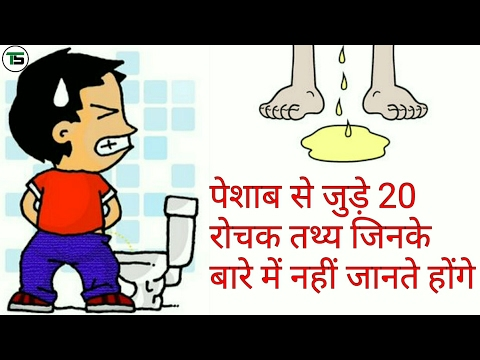 [ Hindi ] 2 0 facts about human urine