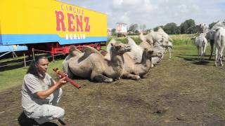 Michael Telapary plays flutes for Camels