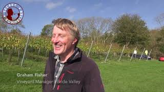 Using Biochar to boost vine growth -  Bride Valley Vineyard Manager Graham Fisher