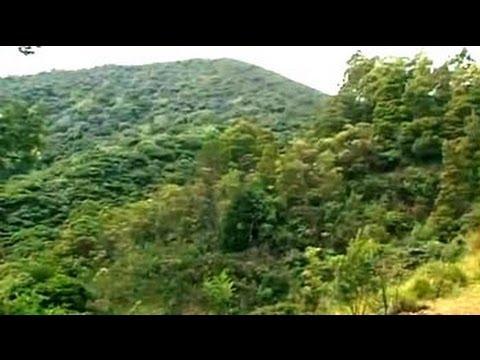 Nilgiris: India's treasure under threat