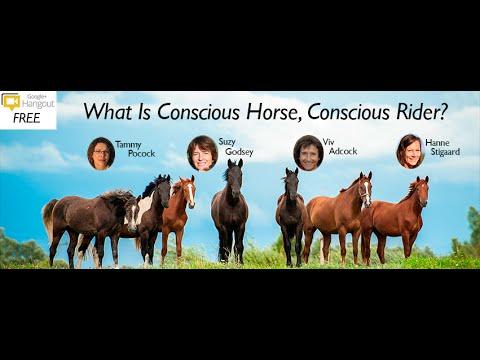 What is Conscious Horse Conscious Rider