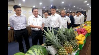 Ong: Agriculture sector's potential must be fully realised thumbnail