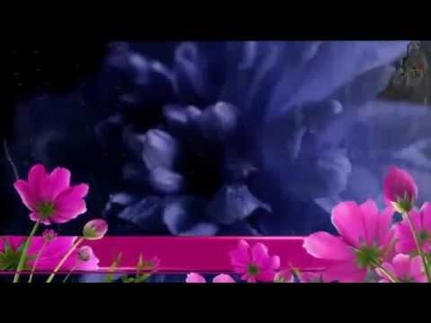 Цветы как будто плачут