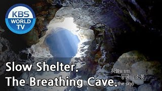 The Breathing Cave. [Slow Shelter / ENG / 2019.01.25]