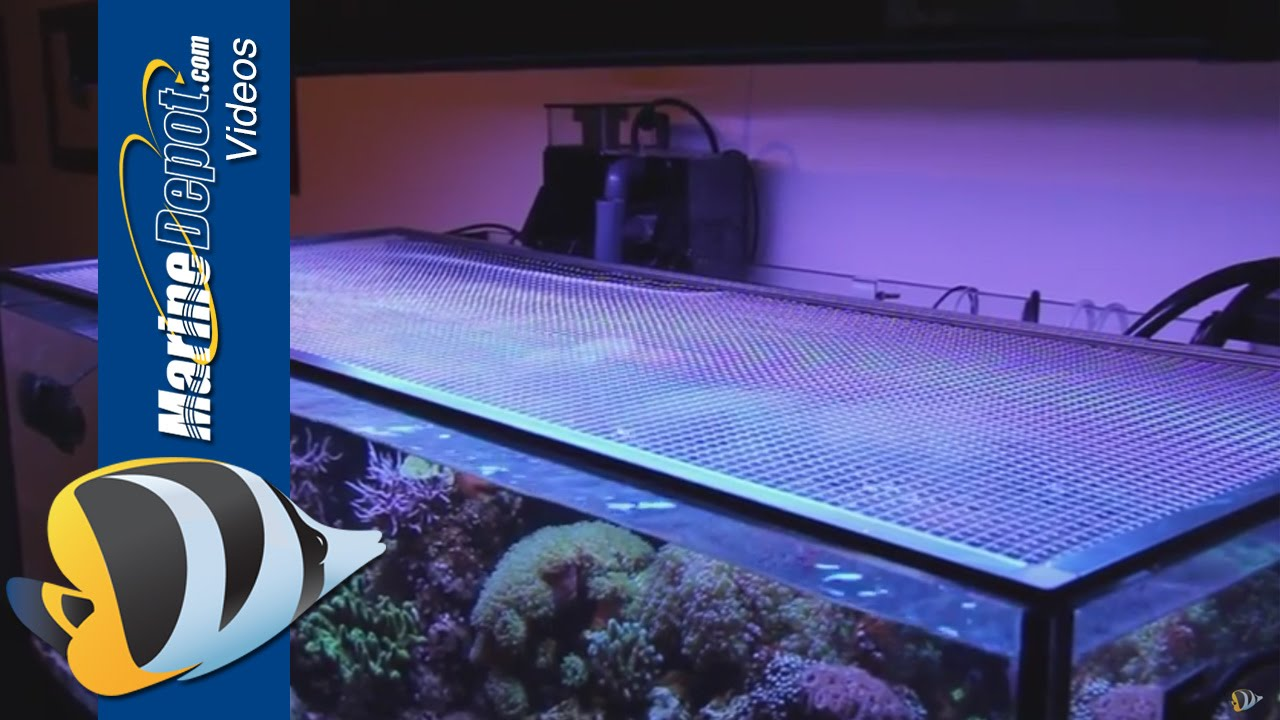 Tutorial Make A Diy Screen Top For Your Aquarium Youtube