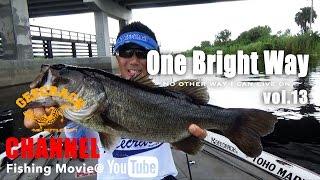 「One Bright Way:北嶋一輝」vol.13 アメリカ バスフィッシング