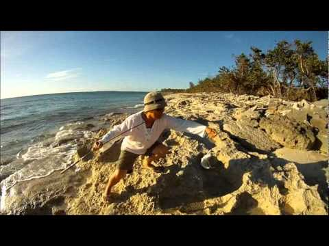Shore fishing Nassau bahamas, Jan 2012