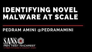 Identifying Novel Malware at Scale w/ Pedram Amini - SANS HackFest & Ranges Summit 2020