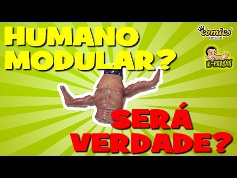 Oscar o humano modular Será que isso é verdade?