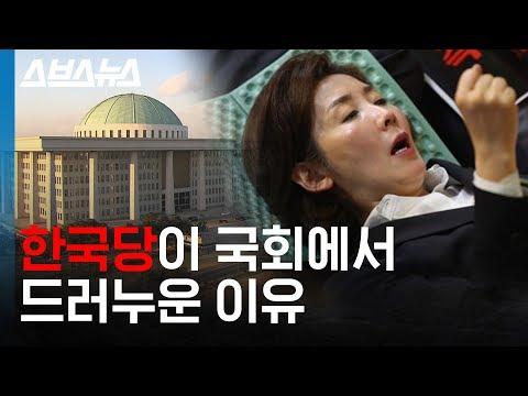 자유한국당은 왜 저런당? 패스트트랙을 반대한 자유한국당의 진짜 이유 (feat.총정리) / 스브스뉴스