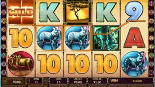 Safari heat free games win - playtech bonus slot game(Safari heat free games win Play : http://www.fhslot.com/play.html Demo : http://www.fhslot.com., 2016-05-08T03:22:19.000Z)