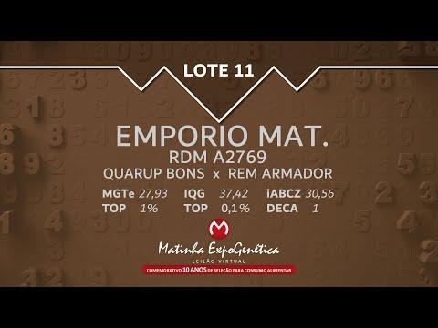 LOTE 11 MATINHA EXPOGENÉTICA 2021