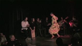 e-フラメンコ通販/Tienda de Flamenco
