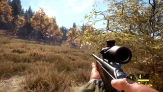 theHunter: Call of the Wild | PC Gameplay | 1080p HD | Max Settings
